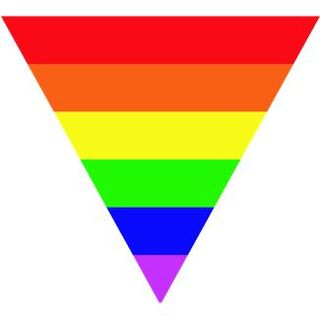 Gay Pride Rainbow Triangle