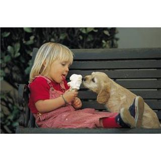 Dog Helping Girl With Ice Cream