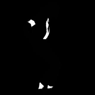 Michael-jackson-1194269__340